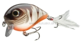 Wobler Team Cormoran Belly Dog N 6,8cm rusty transparent