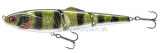 Wobler DAIWA PROREX Joint Bait BT 10cm Live perch