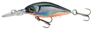 Wobler Team Cormoran Belly Diver Mini 3,8cm roach