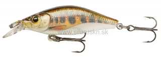 Wobler Team Cormoran Shallow Baby Shad Reloaded 4cm pstruh
