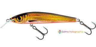 Wobler Salmo Sting 12F GCS